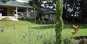 Melmoth Accommodation - Melmoth B&B Accommodation - Golf View Lodge for luxury, affordable accommodation in Melmoth - garden