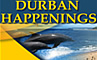Information about accommodation, business and entertainment in Durban
