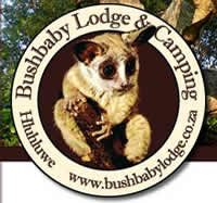Bushbaby Lodge and Camping